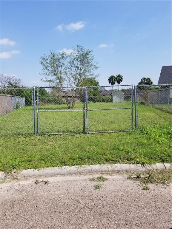 418 Pine Drive, Alamo, TX 78516 (MLS #313535) :: HSRGV Group