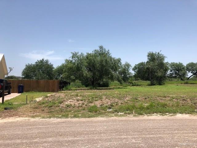 320 N Kika De La Garza Boulevard, La Joya, TX 78560 (MLS #316862) :: The Lucas Sanchez Real Estate Team