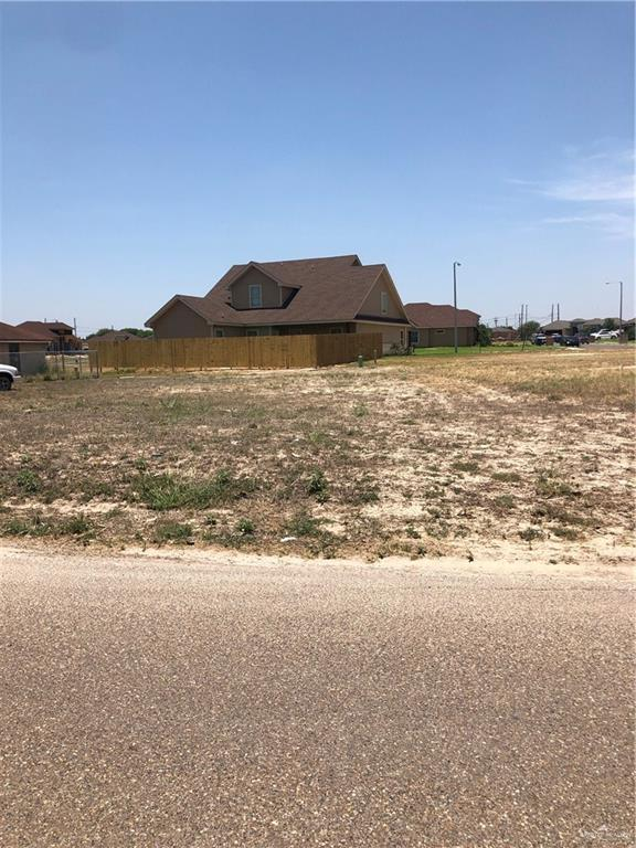 528 N Kika De La Garza Boulevard, La Joya, TX 78560 (MLS #317130) :: The Lucas Sanchez Real Estate Team