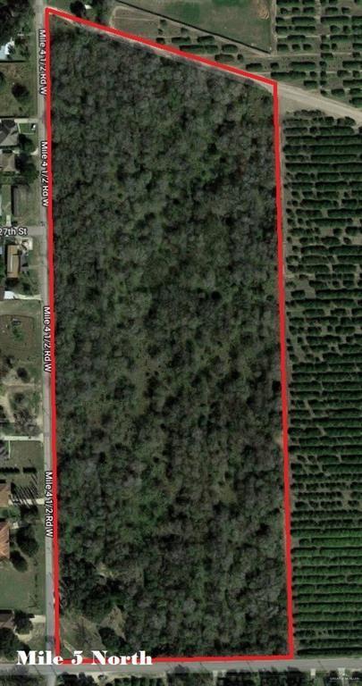 3311 S Bridge Avenue, Weslaco, TX 78596 (MLS #317751) :: eReal Estate Depot