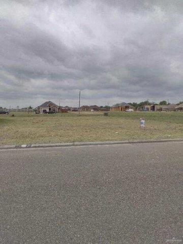 00 Mimosa Circle E, Rio Grande City, TX 78582 (MLS #318717) :: HSRGV Group