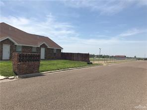 399 San Roberto, Rio Grande City, TX 78582 (MLS #318982) :: Jinks Realty