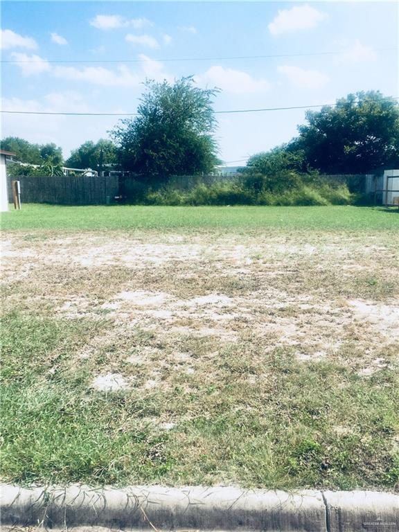 000 Madrid Street, Alamo, TX 78516 (MLS #319557) :: HSRGV Group