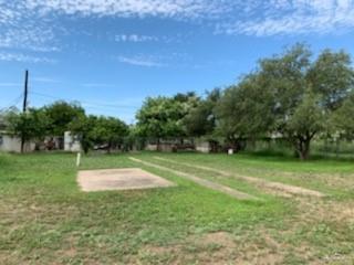 209 N 7th Street, Donna, TX 78537 (MLS #319606) :: Jinks Realty