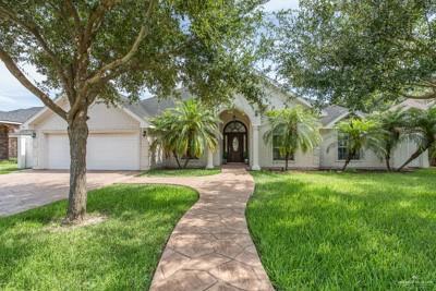 1406 Terrace Drive, Mission, TX 78572 (MLS #319684) :: eReal Estate Depot