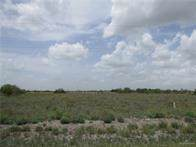 0000 N Chappell Lane, Los Fresnos, TX 78566 (MLS #321331) :: The Ryan & Brian Real Estate Team