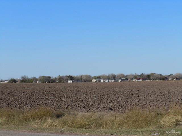 3015 E Alberta Road, Edinburg, TX 78542 (MLS #322418) :: eReal Estate Depot