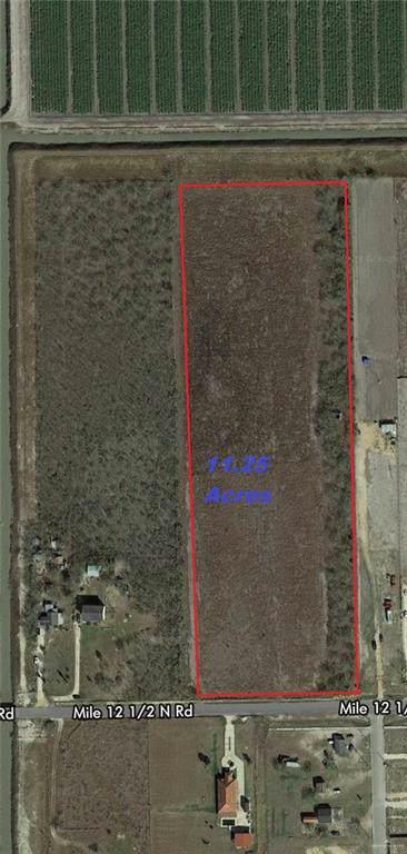 00 Mile 12 1/2 North, Mercedes, TX 78570 (MLS #325714) :: Jinks Realty