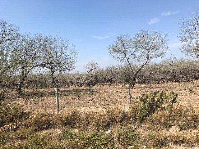 0000 N Shary Road, Mission, TX 78573 (MLS #325848) :: The Lucas Sanchez Real Estate Team