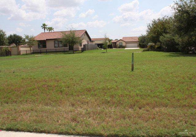 2907 Capri Court, Mission, TX 78572 (MLS #326035) :: The Ryan & Brian Real Estate Team