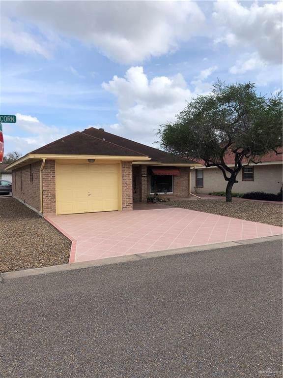 520 Capricorn Street, Mission, TX 78572 (MLS #326861) :: eReal Estate Depot