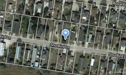 4224 Snobird Bird Lane, Mission, TX 78572 (MLS #329118) :: The Ryan & Brian Real Estate Team