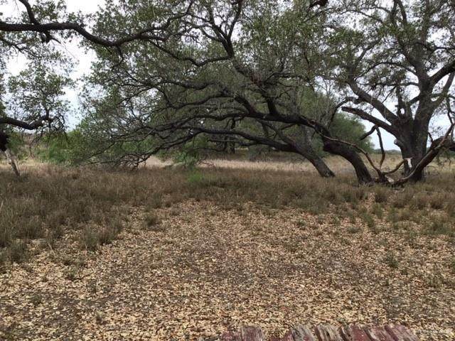 000 S Us Highway 281, Falfurrias, TX 78355 (MLS #330191) :: The Ryan & Brian Real Estate Team