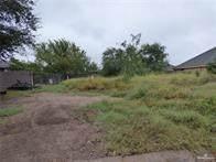 7639 Villa Rama South Street, Mission, TX 78572 (MLS #331149) :: Realty Executives Rio Grande Valley