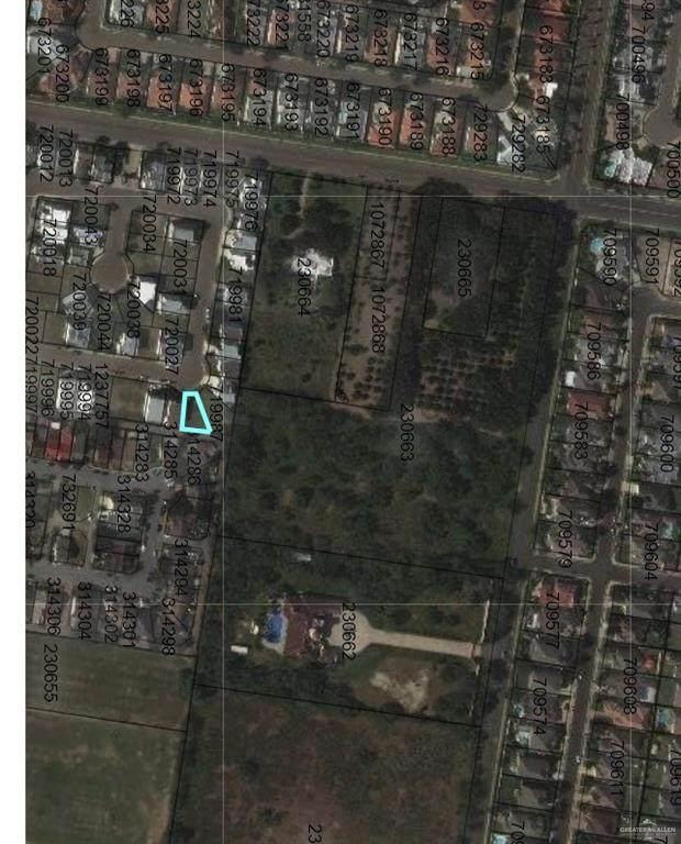 2307 S 42nd Lane, Mcallen, TX 78503 (MLS #331592) :: Jinks Realty