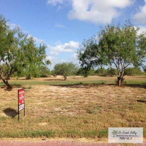 001 Marshall Hutts Road, Rio Hondo, TX 78583 (MLS #333344) :: The Ryan & Brian Real Estate Team