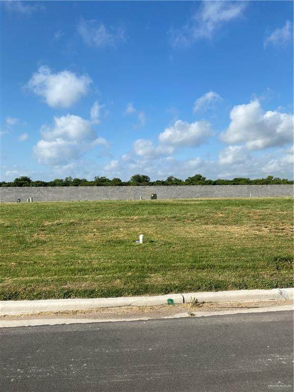 505 Grambling Avenue, Mcallen, TX 78504 (MLS #335772) :: Key Realty