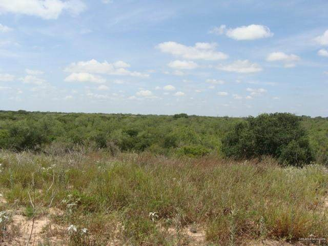 500 W Cr 111 Road, Falfurrias, TX 78355 (MLS #335961) :: The Ryan & Brian Real Estate Team