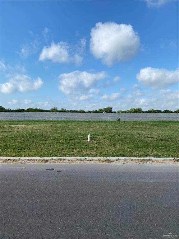 805 Grambling Avenue, Mcallen, TX 78504 (MLS #335973) :: Key Realty
