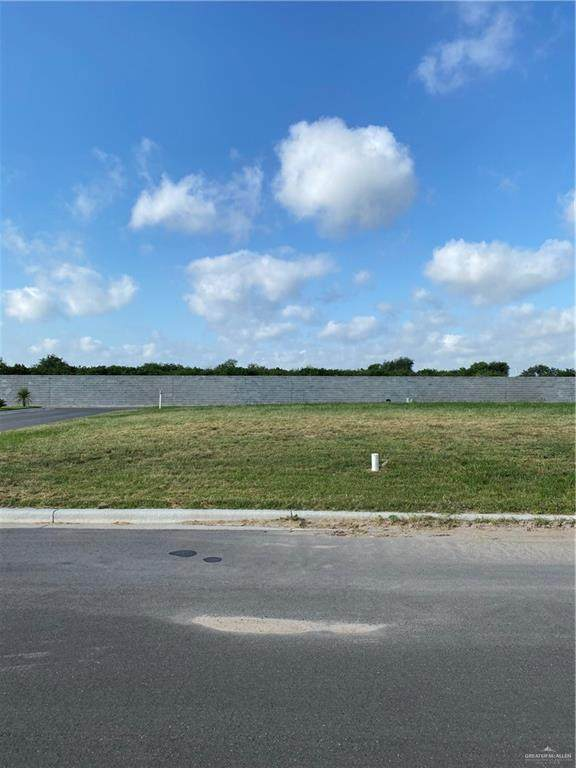 801 Grambling Avenue, Mcallen, TX 78504 (MLS #335976) :: Key Realty