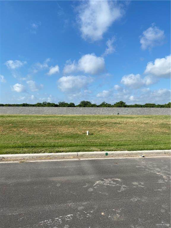 601 Grambling Avenue, Mcallen, TX 78504 (MLS #335978) :: Key Realty