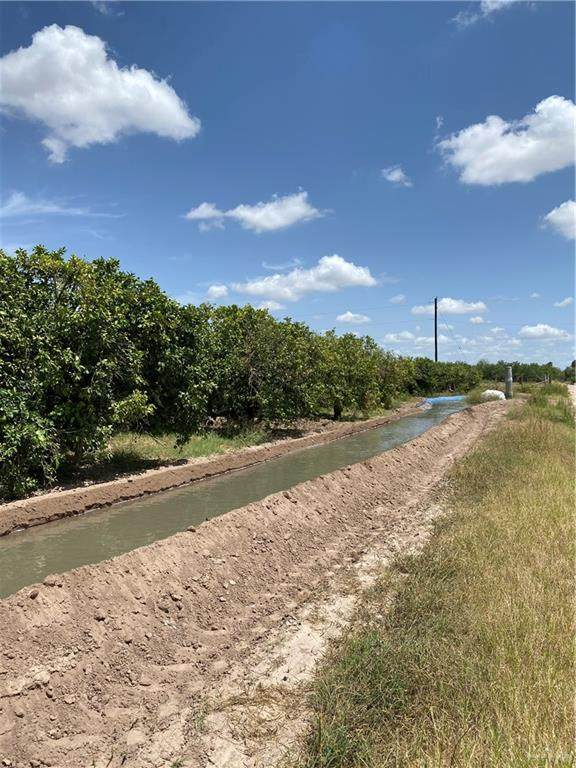 Minnesota N Minnesota Road, Palmview, TX 78574 (MLS #339496) :: The Lucas Sanchez Real Estate Team