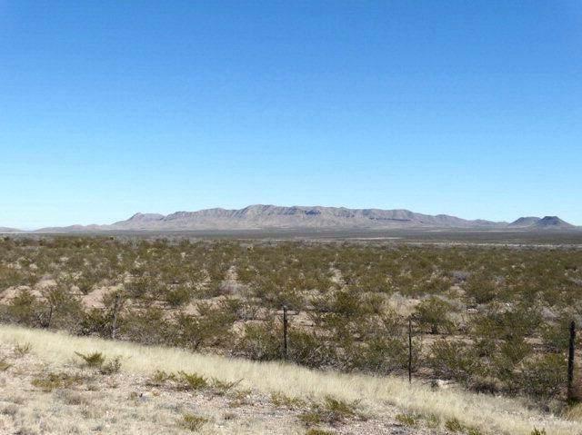 000 Highway 90, Lobo, TX 77591 (MLS #341934) :: BIG Realty