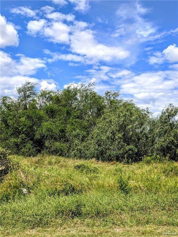 7122 E Rogers Road, Edinburg, TX 78542 (MLS #346395) :: Jinks Realty