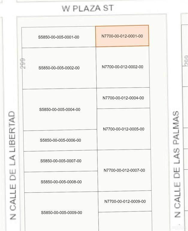 224 N Palmas Street, Weslaco, TX 78596 (MLS #346417) :: Imperio Real Estate