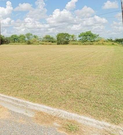 529 Jacy, Mercedes, TX 78570 (MLS #346435) :: The Ryan & Brian Real Estate Team