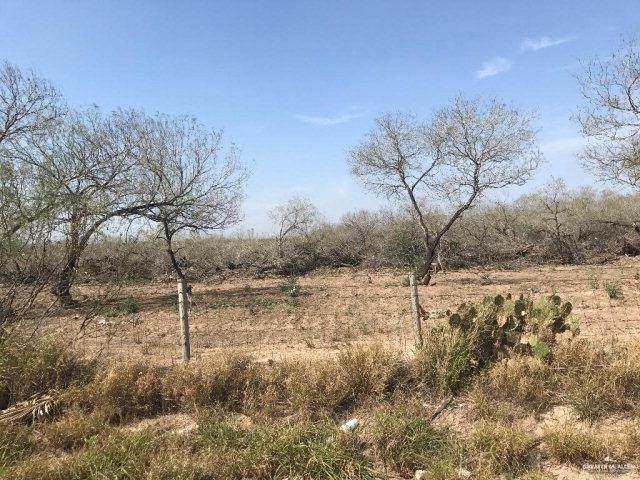 0000 N Shary Road, Mission, TX 78573 (MLS #351210) :: The MBTeam