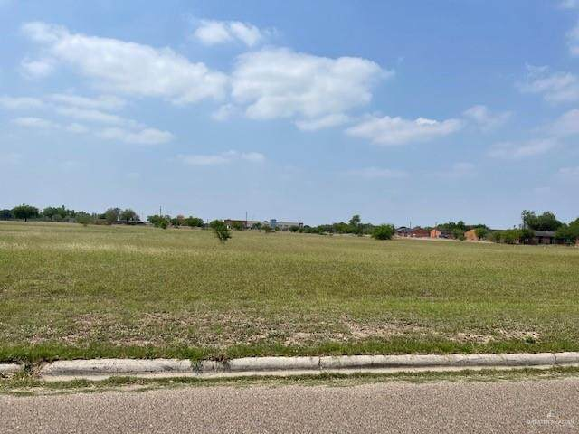 511 S 5th Street, Donna, TX 78537 (MLS #355354) :: The Maggie Harris Team