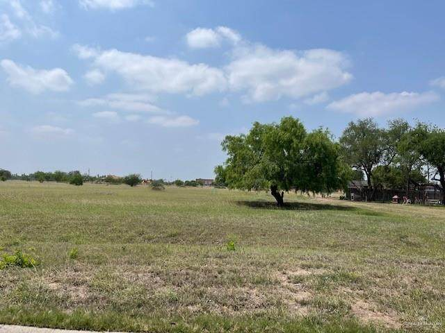 503 S 5th Street, Donna, TX 78537 (MLS #355393) :: The Ryan & Brian Real Estate Team