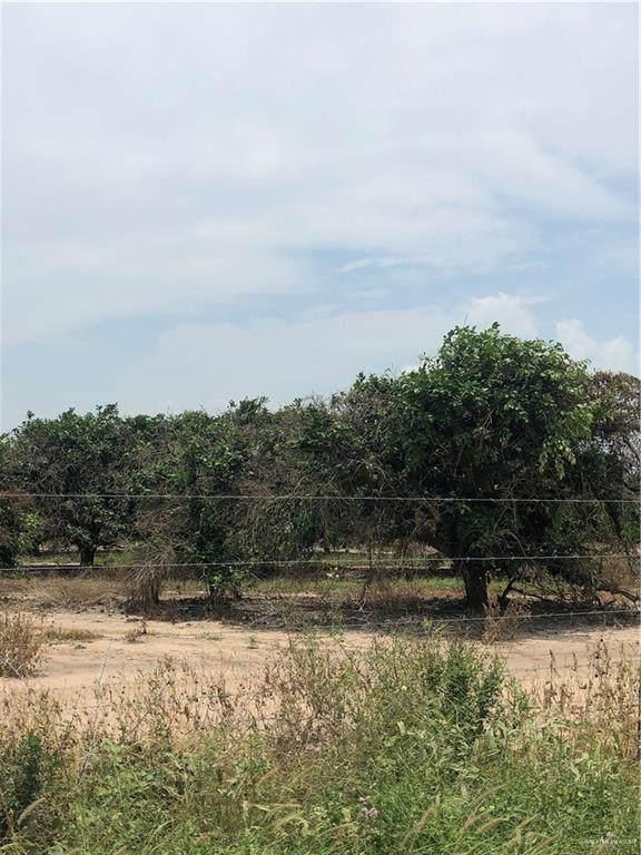 TBD Mile 20 N, Monte Alto, TX 78542 (MLS #359955) :: The Ryan & Brian Real Estate Team