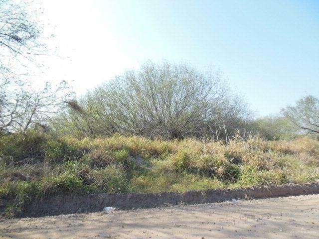 00 Mile 8 North, Mission, TX 78573 (MLS #360465) :: Jinks Realty