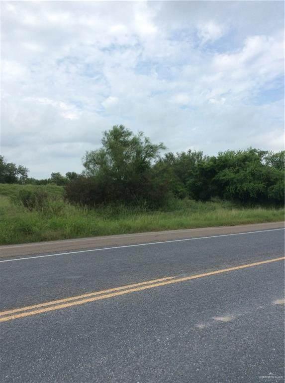 1429 E Us Highway 281, Mercedes, TX 78570 (MLS #361125) :: eReal Estate Depot