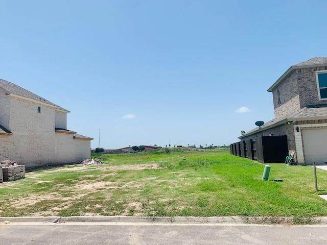 2504 San Patricio, Mission, TX 78572 (MLS #362426) :: Key Realty