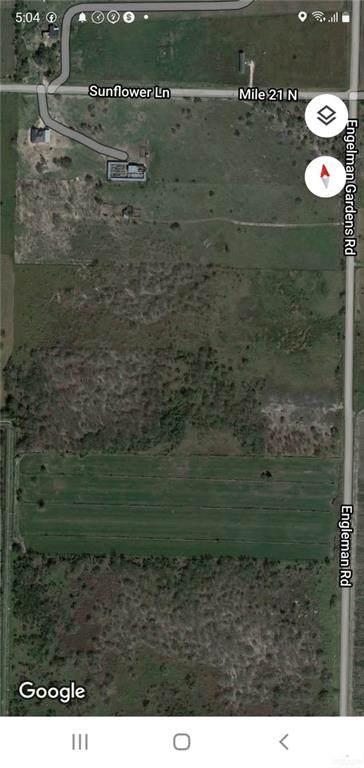 0 Engleman Garden, Edcouch, TX 78538 (MLS #364462) :: The MBTeam