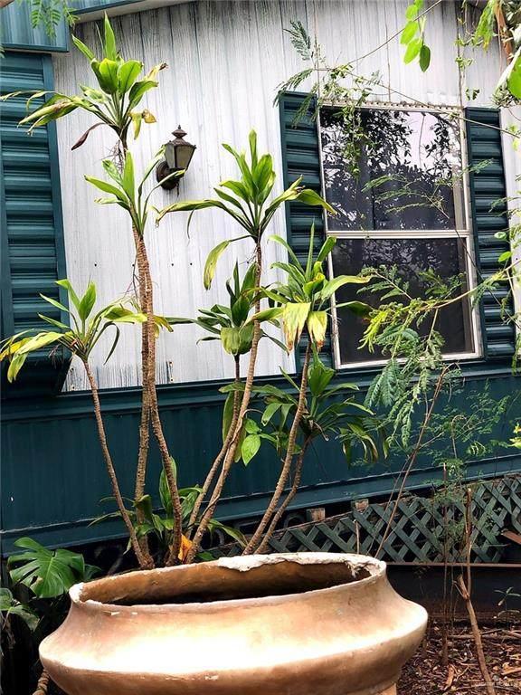 3907 Garden - Photo 1