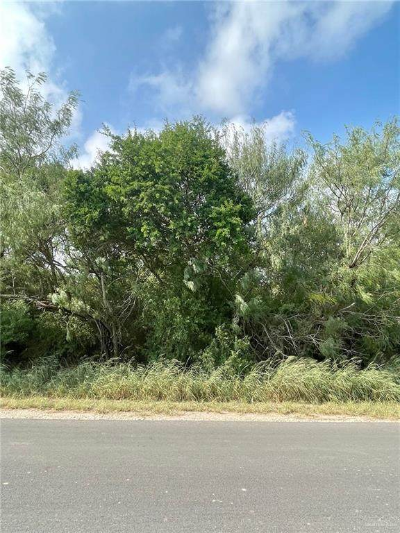 0 S Lion Lake, Progreso Lakes, TX 78596 (MLS #367193) :: API Real Estate