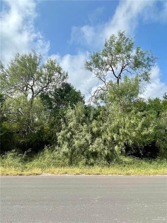 0 S Lion Lake, Progreso Lakes, TX 78596 (MLS #367198) :: API Real Estate