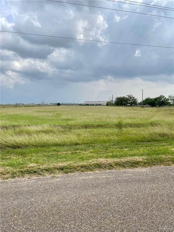 NN Lion Lake, Progreso Lakes, TX 78596 (MLS #367217) :: Jinks Realty