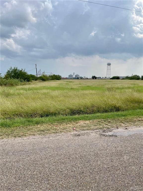 NN Lion Lake, Progreso Lakes, TX 78596 (MLS #367231) :: Jinks Realty