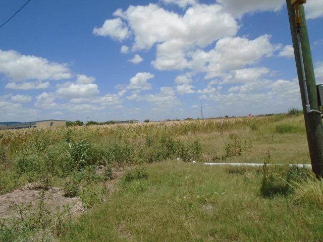 0 Anaya, Pharr, TX 78577 (MLS #187136) :: The Ryan & Brian Real Estate Team