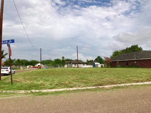206 Meadow Lark Lane, Weslaco, TX 78596 (MLS #209239) :: The Ryan & Brian Team of Experts Advisors