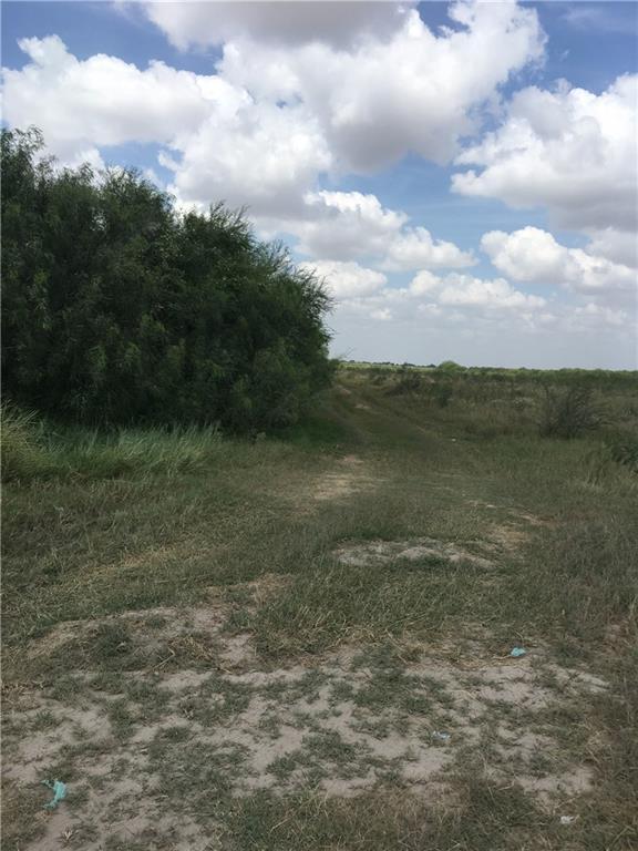 10.5 Western Road, Mission, TX 78573 (MLS #211924) :: Jinks Realty
