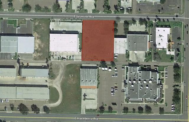 000 E Jasmine Avenue, Mcallen, TX 78501 (MLS #214916) :: Jinks Realty