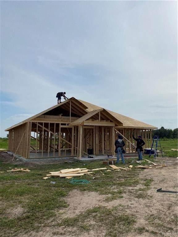 11319 Abasolo, Donna, TX 78537 (MLS #365085) :: API Real Estate