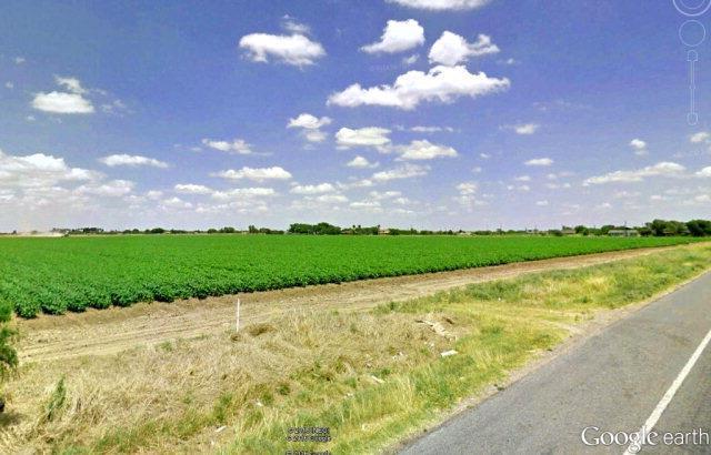 0 N La Blanca Road, Donna, TX 78537 (MLS #196958) :: Jinks Realty