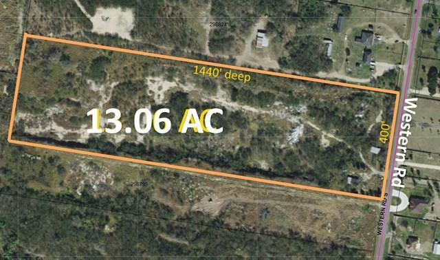 13 Ac Western Road, Mission, TX 78574 (MLS #211077) :: Jinks Realty